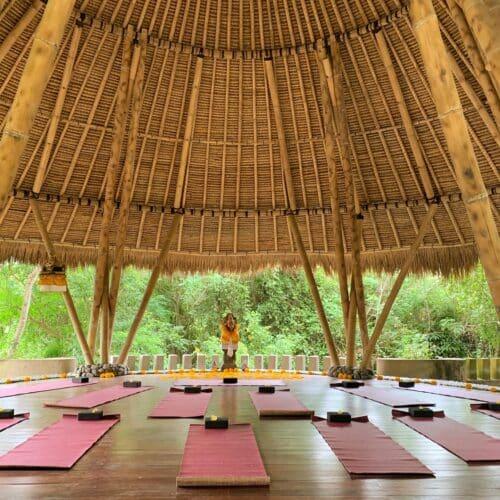 Yang Yoga Uddannelse Bali 2022 - Yogauddannelse for krop og sjæl