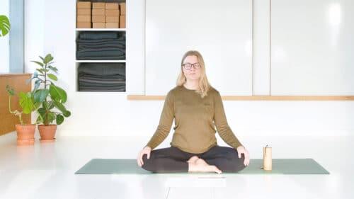 Kronechakra meditation